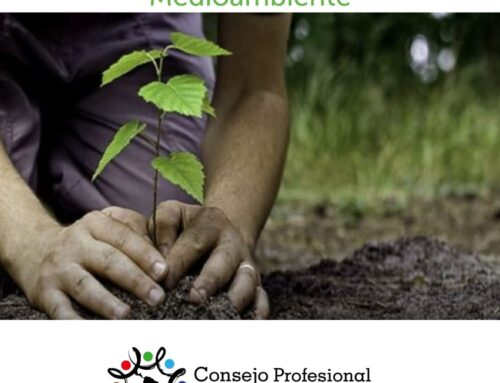 05 de Junio – Día Mundial del Medioambiente.