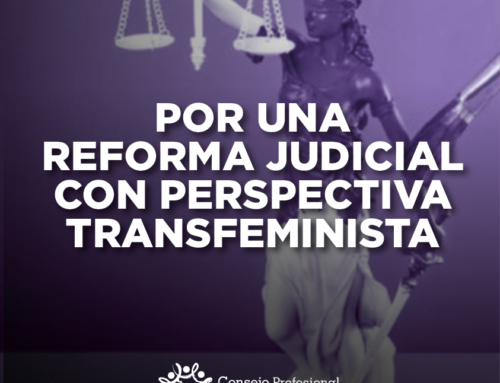 POR UNA REFORMA JUDICIAL CON PERSPECTIVA TRANSFEMINISTA